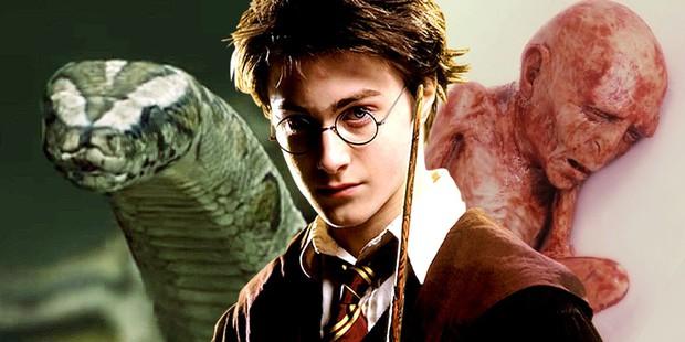 Tiết lộ lý do cực đen tối khiến Harry Potter bị cả nhà Dursley hành hạ: Bằng chứng được sắp đặt từ tập 1 mà không ai phát hiện? - Ảnh 4.