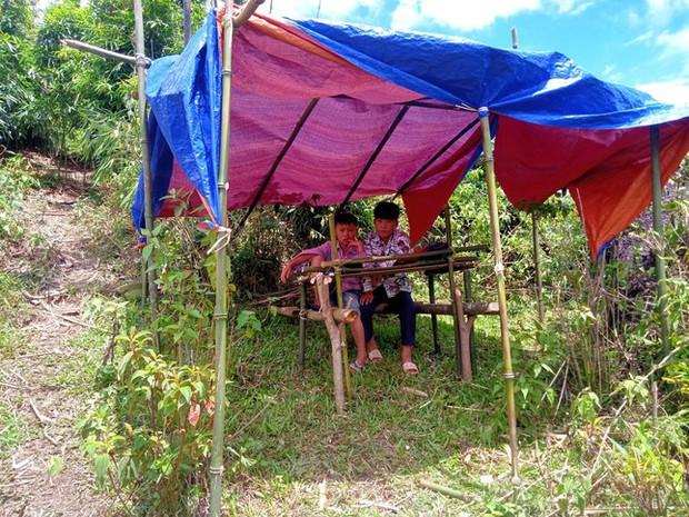 Những góc học online đặc biệt giữa núi rừng của học sinh vùng cao xứ Nghệ - Ảnh 5.