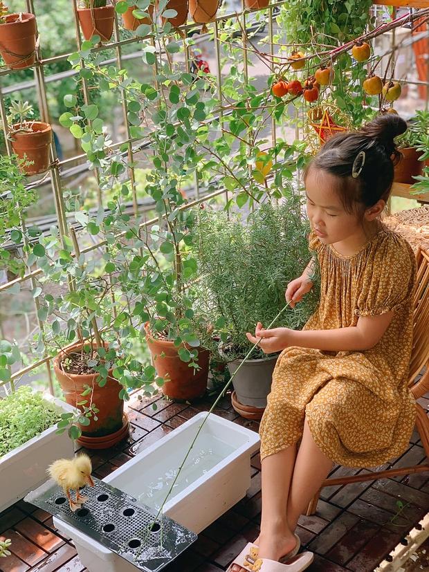 Chú pet đáng yêu nhất mùa dịch ở Hà Nội: Ra đời nhờ cả nhà mua trứng vịt lộn về ấp, cùng dự khai giảng, học bài với cô chủ lớp 1 - Ảnh 7.