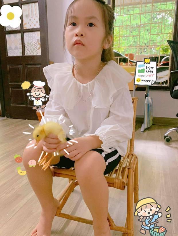 Chú pet đáng yêu nhất mùa dịch ở Hà Nội: Ra đời nhờ cả nhà mua trứng vịt lộn về ấp, cùng dự khai giảng, học bài với cô chủ lớp 1 - Ảnh 3.