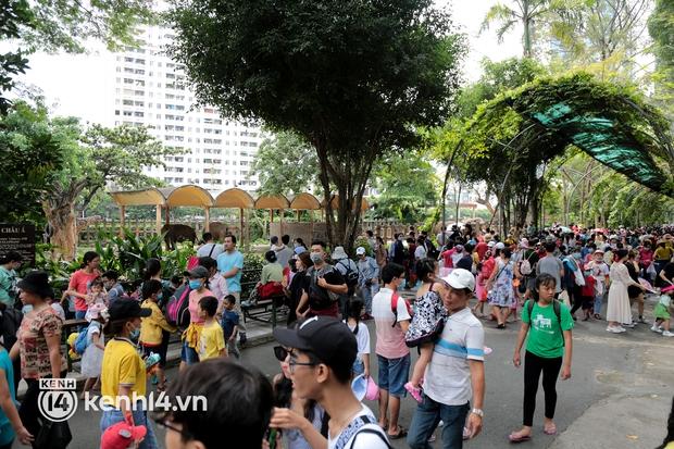 """Giám đốc Thảo Cầm Viên Sài Gòn: """"Đợt dịch này cả xã hội đều khó khăn, chúng tôi rất cảm kích cộng đồng đã hỗ trợ"""" - Ảnh 2."""