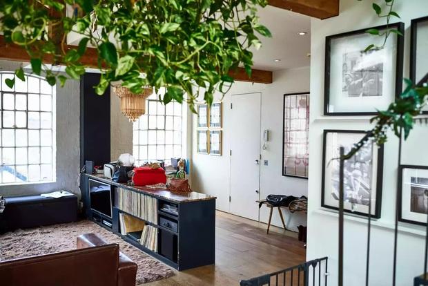 Phong thủy căn hộ nhỏ có 5 quy tắc đơn giản nhưng làm theo thì sinh khí tràn đầy, tinh thần phơi phới - Ảnh 3.