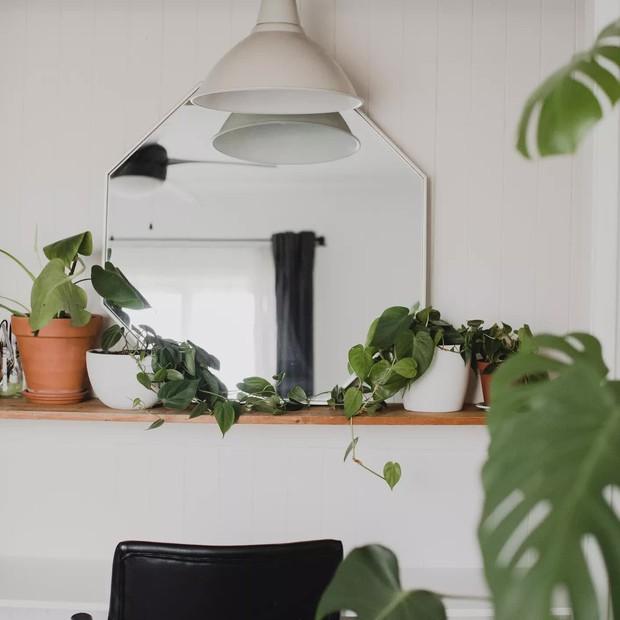 Phong thủy căn hộ nhỏ có 5 quy tắc đơn giản nhưng làm theo thì sinh khí tràn đầy, tinh thần phơi phới - Ảnh 6.