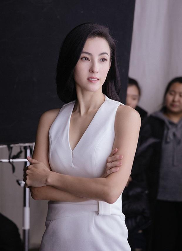 Bị hỏi Tạ Đình Phong có mang con trai tới gặp Vương Phi hay không, Trương Bá Chi phản hồi bằng vỏn vẹn 6 chữ - Ảnh 4.
