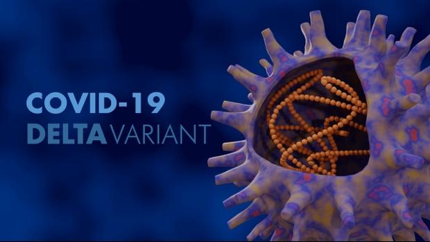 Vắc-xin Sputnik V: Công nghệ, độ an toàn và hiệu quả, khả năng chống biến thể Delta - Ảnh 13.