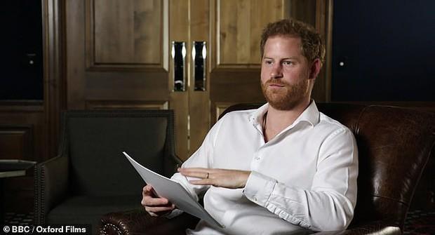 Hoàng tử Harry bất ngờ bị dư luận ném đá dữ dội vì một lời nhận xét về vợ chồng Nữ hoàng Anh - Ảnh 3.
