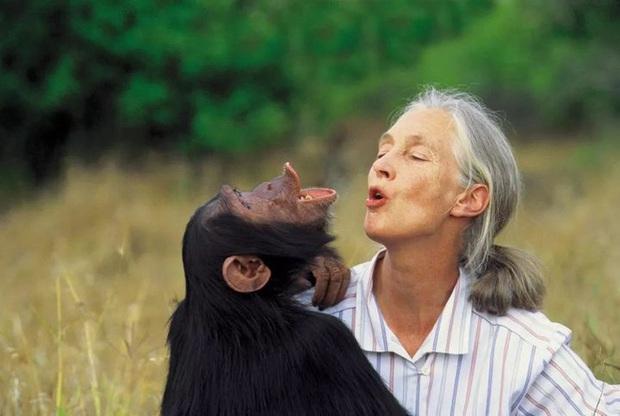 Chiến tranh tinh tinh: Vì tranh giành quyền lực mà những con tinh tinh này đã tổ chức một cuộc chiến đẫm máu kéo dài 4 năm - Ảnh 3.