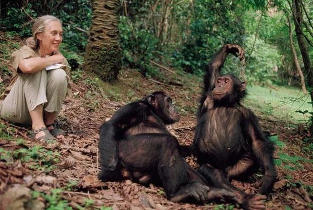 Chiến tranh tinh tinh: Vì tranh giành quyền lực mà những con tinh tinh này đã tổ chức một cuộc chiến đẫm máu kéo dài 4 năm - Ảnh 4.