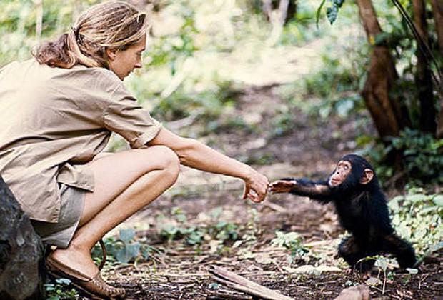 Chiến tranh tinh tinh: Vì tranh giành quyền lực mà những con tinh tinh này đã tổ chức một cuộc chiến đẫm máu kéo dài 4 năm - Ảnh 6.