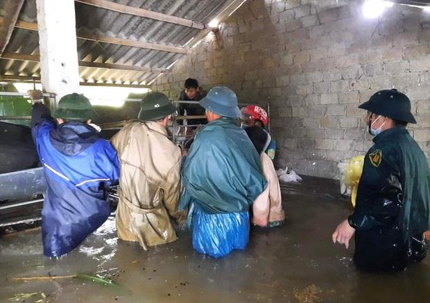 Thủy điện và hồ đập xả lũ, nhiều tuyến quốc lộ và nhà dân ở Nghệ An ngập sâu trong nước  - Ảnh 7.
