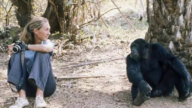 Chiến tranh tinh tinh: Vì tranh giành quyền lực mà những con tinh tinh này đã tổ chức một cuộc chiến đẫm máu kéo dài 4 năm - Ảnh 8.
