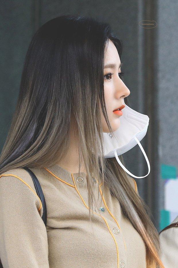 Ở Hàn mũi gồ mới là hot, top idol được khen xinh toàn sở hữu đặc điểm này! - Ảnh 10.
