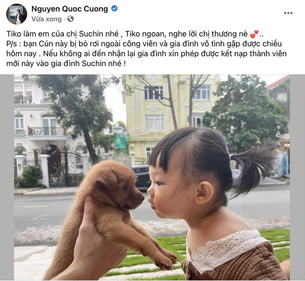 Cường Đô La vừa đón thêm thành viên mới bị bỏ rơi ngoài công viên, ái nữ Suchin mới 1 tuổi đã có em rồi! - Ảnh 2.