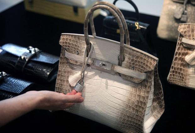 Giải mã sức hút của túi Hermès Birkin đối với giới siêu giàu: Sở hữu một chiếc túi là khoản đầu tư hấp dẫn, còn hơn cả vàng và chứng khoán  - Ảnh 1.