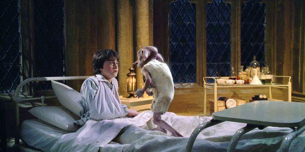 5 giả thuyết Harry Potter điên cuồng, đen tối mà rất logic: Cái chết của Dumbledore được dự đoán trước 5 năm, tuổi thơ Harry có vấn đề? - Ảnh 6.