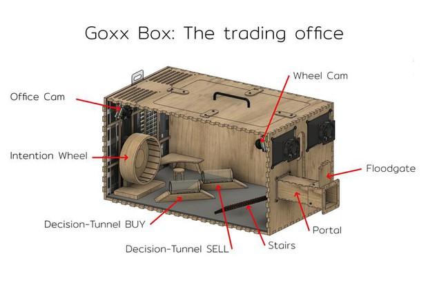 Chú hamster đầu tư tài chính giỏi như chuyên gia phố Wall, sống trong lồng công nghệ cao chạy đến đâu ra tiền đến đấy - Ảnh 2.