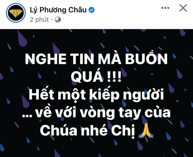 Cả showbiz Việt xót thương khi hay tin ca sĩ Phi Nhung qua đời: Lan Ngọc buồn bã, Đan Trường xúc động nói lời tiễn biệt - Ảnh 6.