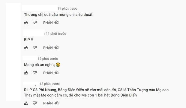 Netizen tràn vào MV Bông Điên Điển để tạm biệt cố nghệ sĩ Phi Nhung: Vậy là chị đã mãi mãi ra đi rồi sao? - Ảnh 7.