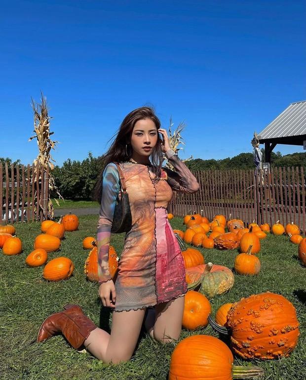 Vừa qua Mỹ, Chi Pu đã check-in đậm chất Halloween khiến dân mạng nhớ ngay đến drama năm nào của nhân vật nổi tiếng này - Ảnh 3.