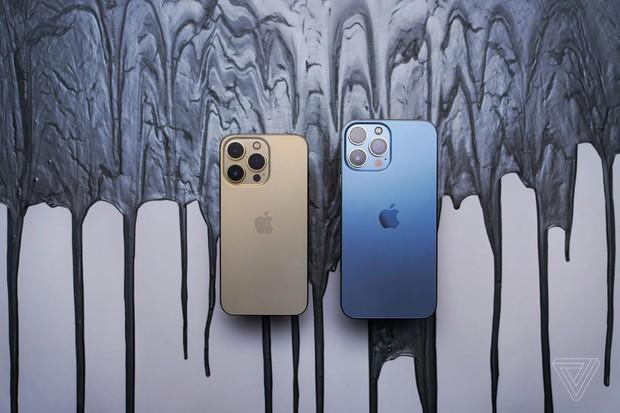 Apple bị phạt 43 tỷ đồng vì bán iPhone 13 không kèm bộ sạc - Ảnh 4.