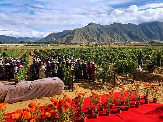 Loạt địa điểm chứng minh Trung Quốc như một quốc gia ngoài hành tinh, toàn là công trình giữ nhiều cái nhất trên thế giới - Ảnh 7.