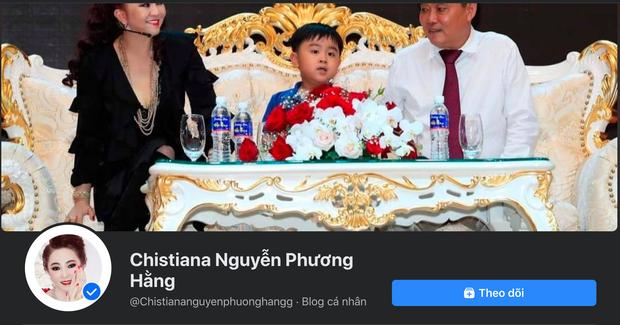 Xuất hiện hàng loạt fanpage giả mạo nữ CEO Đại Nam với câu từ gay gắt về sự ra đi của Phi Nhung - Ảnh 5.