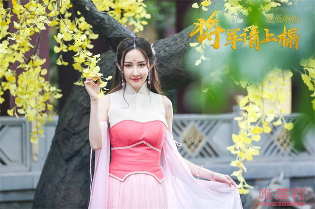Đáng thương nữ hoàng phim rác xứ Trung: 10 năm chả có bộ nào trên 6 điểm, bất chấp dao kéo nhưng có cứu nổi danh tiếng bết bát? - Ảnh 6.