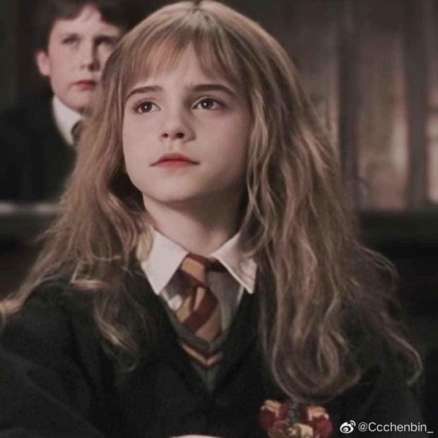 Không nhận ra Hermione Emma Watson ngày nào: Đi phi cơ riêng nhưng ngoại hình già xọm kém sắc đến ngỡ ngàng - Ảnh 12.