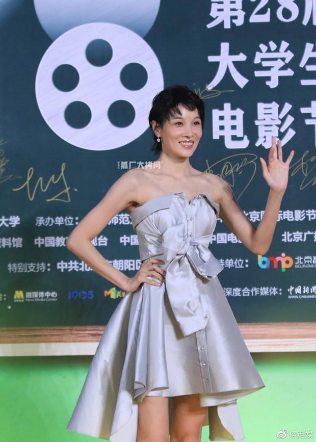 Thảm đỏ Student Awards: Tình địch Dương Mịch chặt chém bạn gái Dương Dương, ai ngờ bị nàng thơ mới lu mờ không thương tiếc - Ảnh 11.