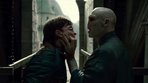 Tin được không, Harry Potter và Voldemort hóa ra là... anh em họ: Tác giả đã khẳng định, bằng chứng rõ rành rành nghe mà sốc óc! - Ảnh 1.