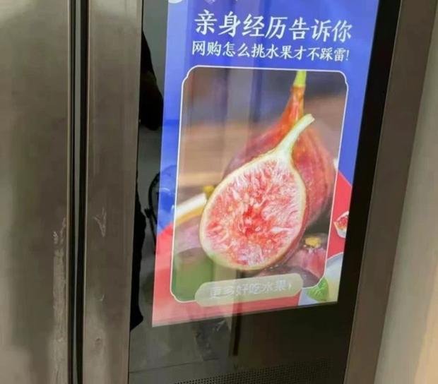 Hí hửng vì sắm được tủ lạnh thông minh, không ngờ thứ mua về lại biến thành bảng quảng cáo có chức năng cất trữ thực phẩm - Ảnh 1.