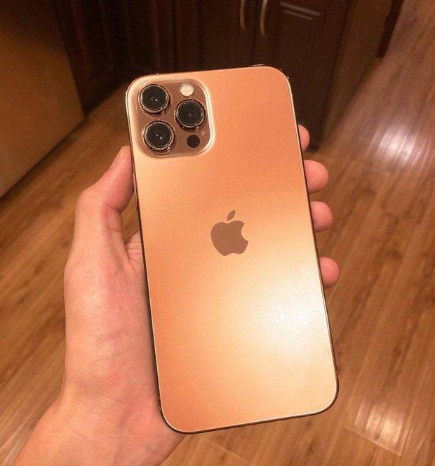Cận kề ngày ra mắt, ngoài màu hồng iPhone 13 còn rò rỉ thêm màu sắc mới hứa hẹn đốn tim hội chị em - Ảnh 2.