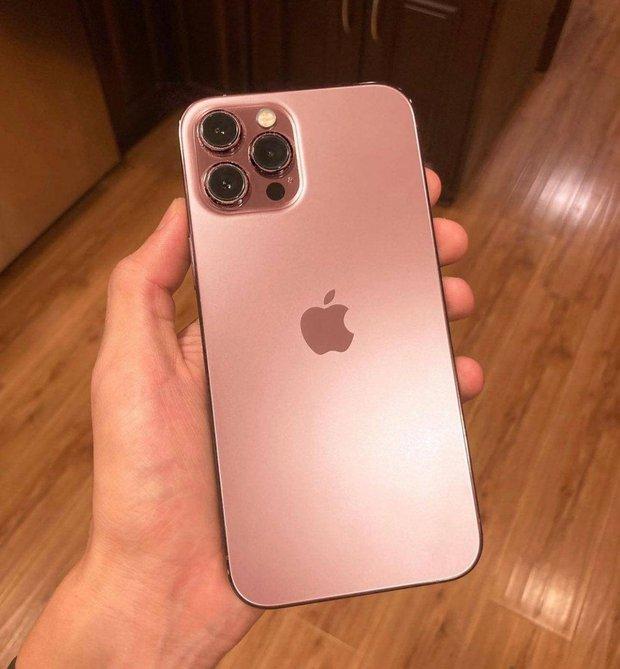 Cận kề ngày ra mắt, ngoài màu hồng iPhone 13 còn rò rỉ thêm màu sắc mới hứa hẹn đốn tim hội chị em - Ảnh 1.