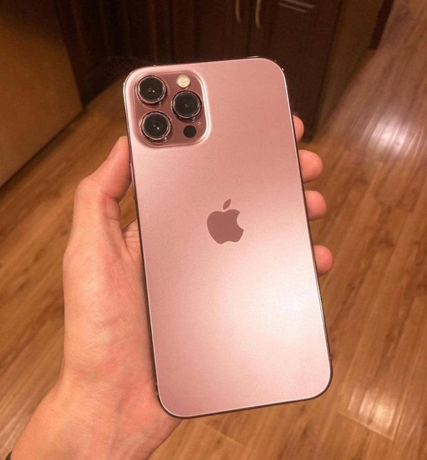 Soi hint trong thư mời sự kiện Apple, chắc chắn sẽ có iPhone 13 màu hồng? - Ảnh 3.