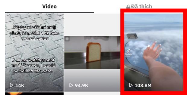 Clip: Bắt trend nhạc thì rất chill nhưng thò ra khỏi máy bay là dễ mất tay như chơi, gây sốc đạt cả trăm triệu view - Ảnh 4.