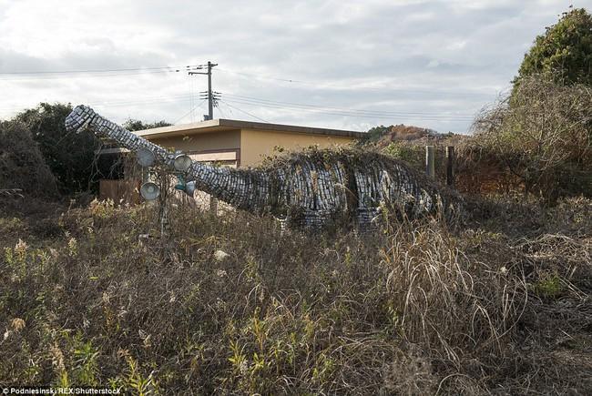 Chùm ảnh: Những bức hình ám ảnh về thị trấn ma sau thảm họa nhà máy hạt nhân Fukushima, Nhật Bản 2011 - Ảnh 11.