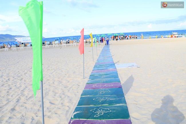 Đà Nẵng khánh thành đường ra biển dành riêng cho người khuyết tật - Ảnh 1.