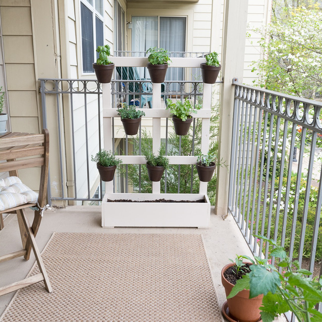 Ý tưởng về vườn rau gia vị tiết kiệm diện tích cho ban công nhỏ - Ảnh 10.