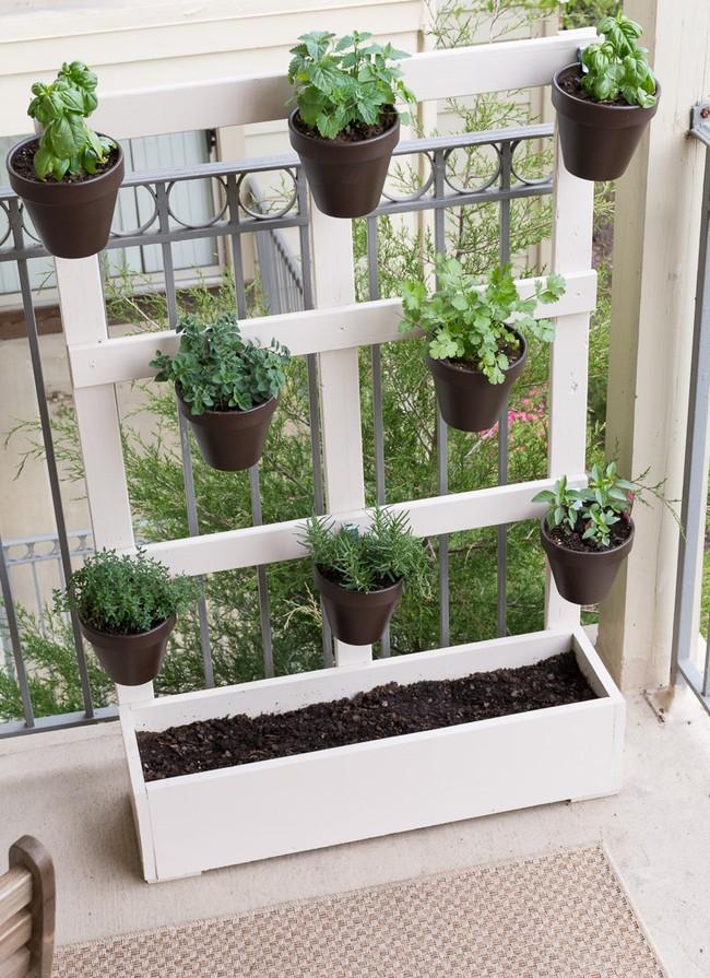 Ý tưởng về vườn rau gia vị tiết kiệm diện tích cho ban công nhỏ - Ảnh 11.