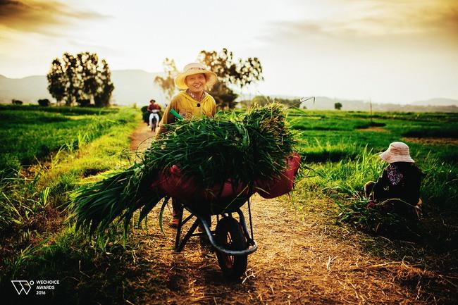 5 địa điểm sẽ trở thành thiên đường du lịch cho giới trẻ Việt trong năm tới - Ảnh 13.