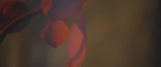 Đây là cảnh nóng đầu tiên trên màn ảnh của Minh Hằng! - Ảnh 12.