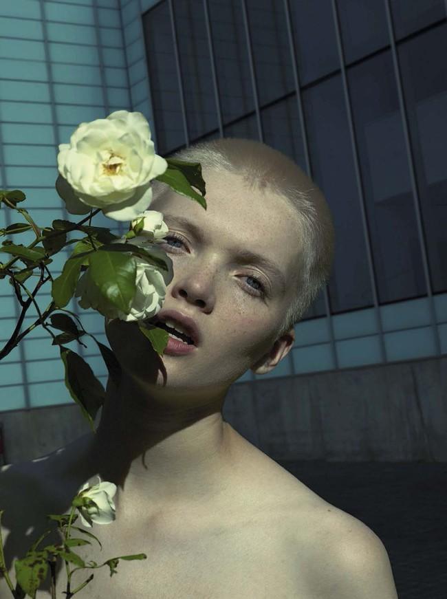 Tổng biên tập - linh hồn của kinh thánh thời trang Vogue qua đời - Ảnh 12.