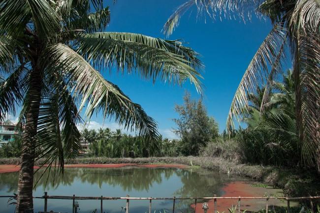 Địa điểm du lịch 30-4, 1-5 ở Hội An thơ mộng với 2 villa cực đẹp - Ảnh 6.