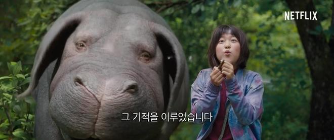 Chết ngất với quái vật siêu đáng yêu lai giữa lợn và hà mã từ bom tấn Okja - Ảnh 2.
