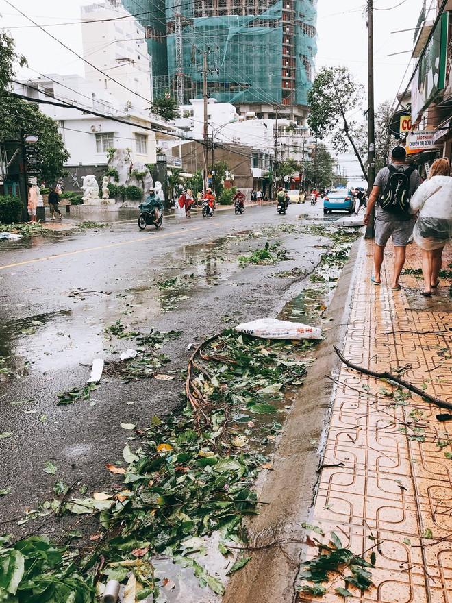 Chùm ảnh: Đường phố Nha Trang tan tác sau khi cơn bão số 12 càn quét - Ảnh 6.