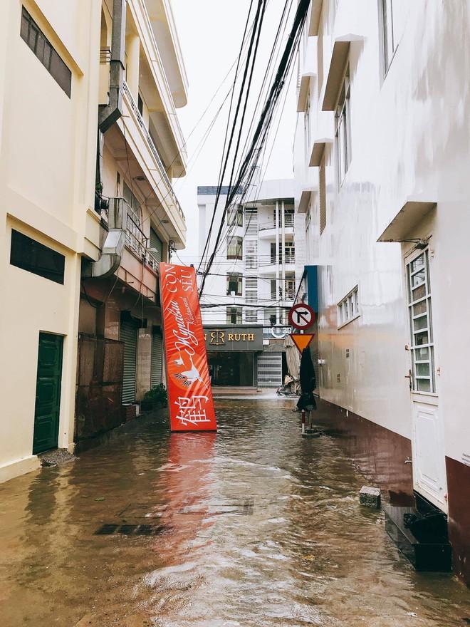 Chùm ảnh: Đường phố Nha Trang tan tác sau khi cơn bão số 12 càn quét - Ảnh 3.