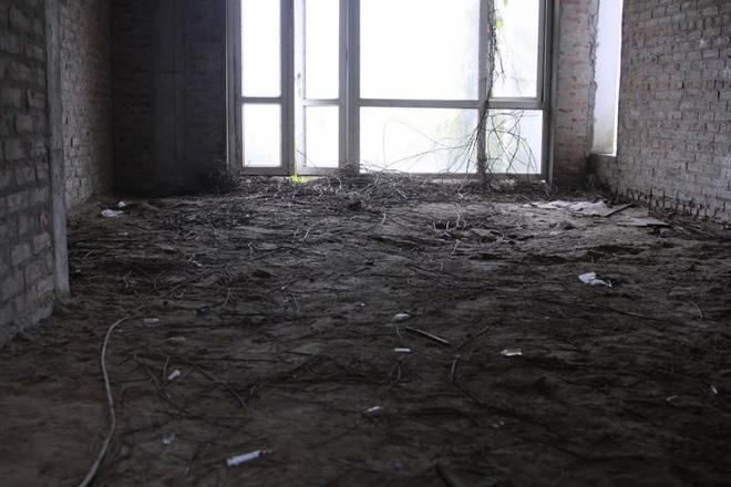 Nhiều kim tiêm dính máu bị vứt tràn lan trong khu biệt thự tiền tỷ ở Hà Nội - Ảnh 4.