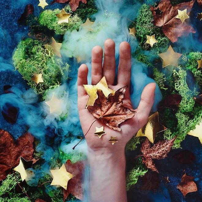 Bộ ảnh tĩnh vật mùa thu tuyệt đẹp dưới ống kính của nữ nhiếp ảnh gia người Nga - Ảnh 3.