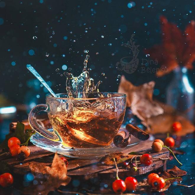 Bộ ảnh tĩnh vật mùa thu tuyệt đẹp dưới ống kính của nữ nhiếp ảnh gia người Nga - Ảnh 11.
