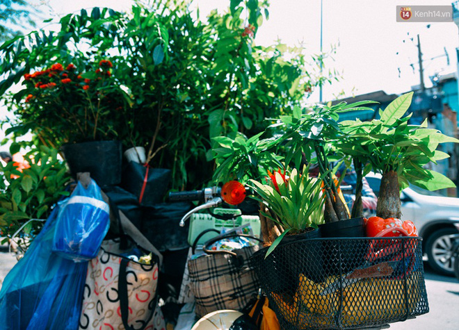Trên đường phố Sài Gòn, có những người hàng chục năm chở theo một chợ xanh sau yên xe máy - Ảnh 3.